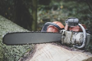 wood chainsaw
